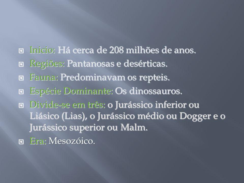 Inicio: Há cerca de 208 milhões de anos.