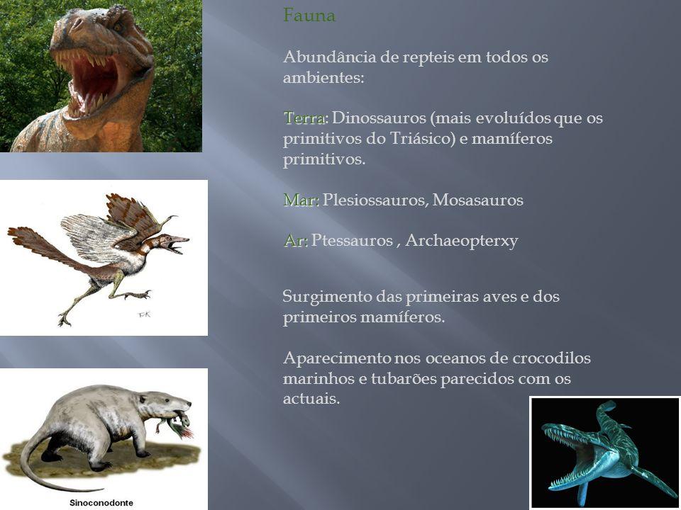 Fauna Abundância de repteis em todos os ambientes: