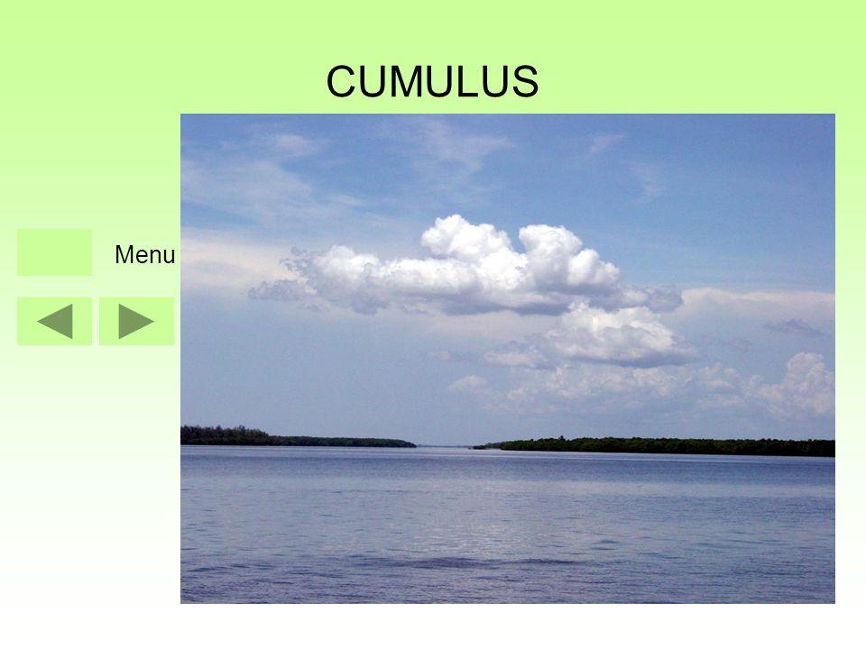 CUMULUS Menu