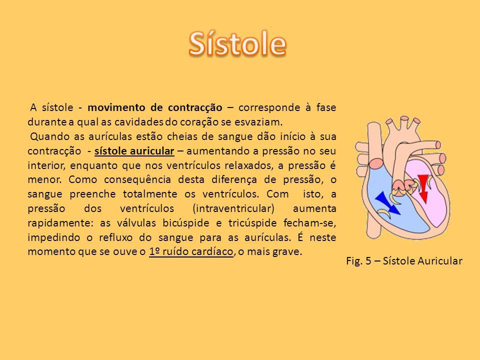 Sístole A sístole - movimento de contracção – corresponde à fase durante a qual as cavidades do coração se esvaziam.