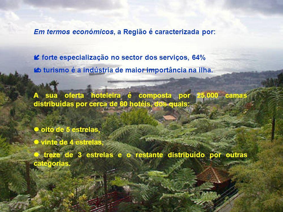 Em termos económicos, a Região é caracterizada por: