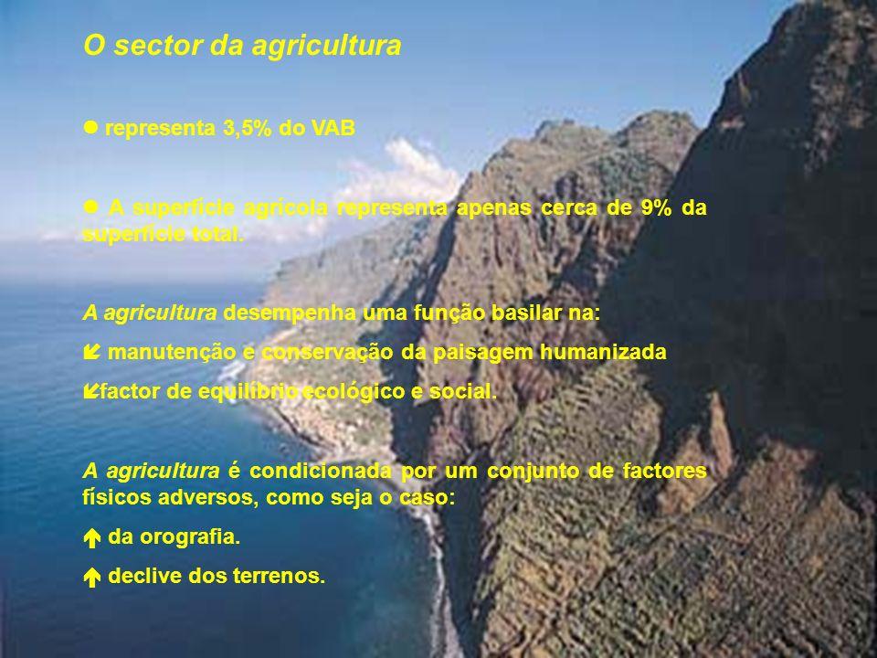 O sector da agricultura