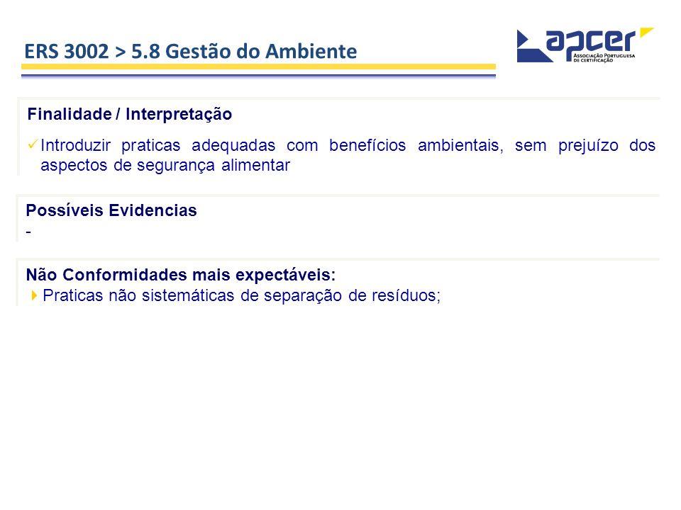 ERS 3002 > 5.8 Gestão do Ambiente