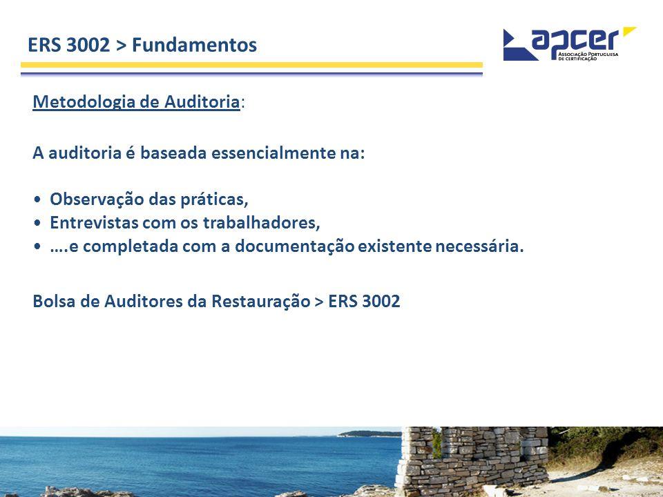 ERS 3002 > Fundamentos Metodologia de Auditoria: