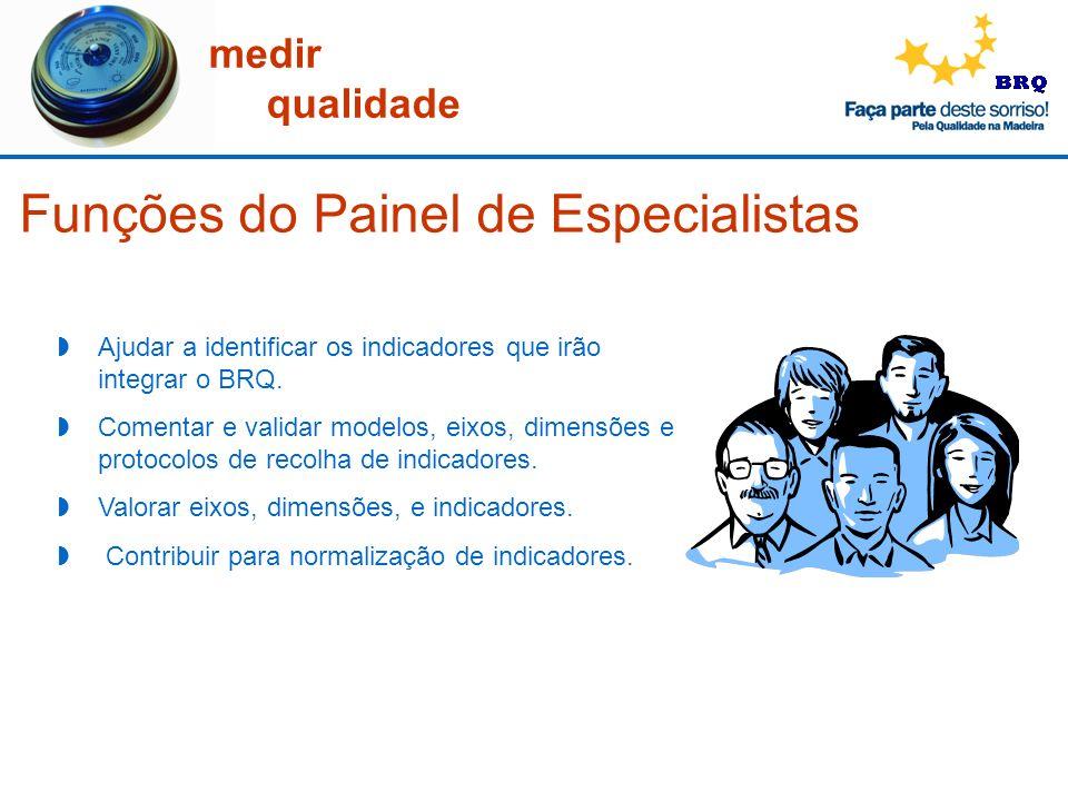 Funções do Painel de Especialistas