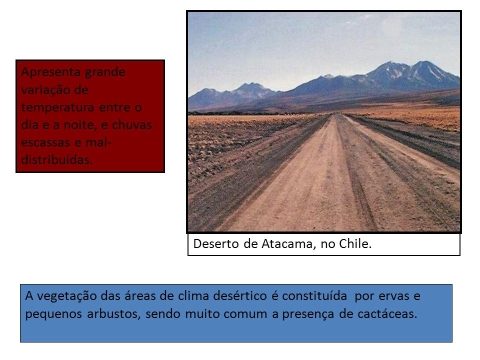 Os climas e as paisagens vegetais na am rica ppt video for Cactaceas de chile
