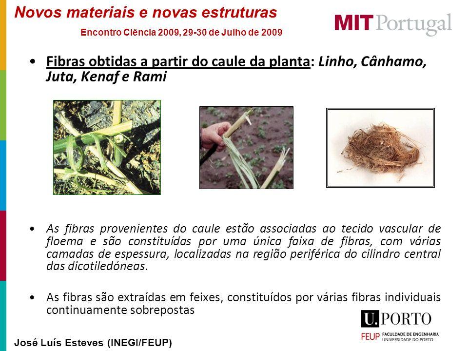 Fibras obtidas a partir do caule da planta: Linho, Cânhamo, Juta, Kenaf e Rami