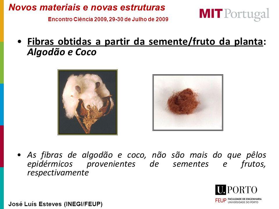 Fibras obtidas a partir da semente/fruto da planta: Algodão e Coco