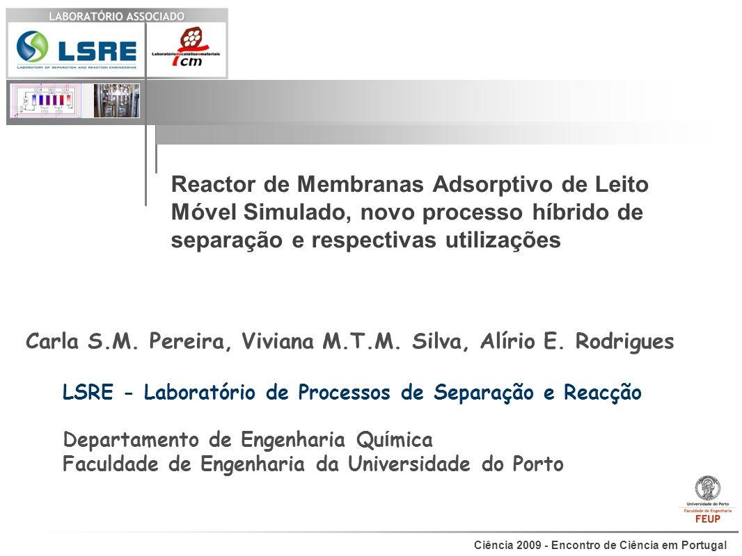 Carla S.M. Pereira, Viviana M.T.M. Silva, Alírio E. Rodrigues
