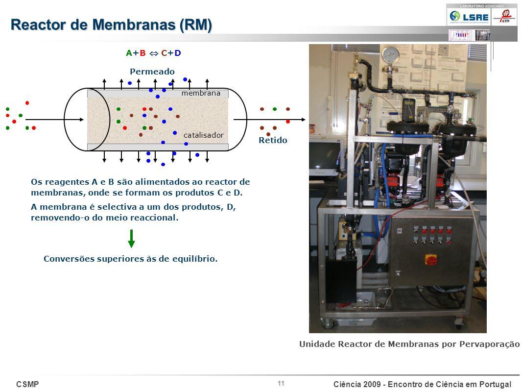 Reactor de Membranas (RM)