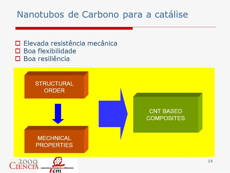 Nanotubos de Carbono para a catálise