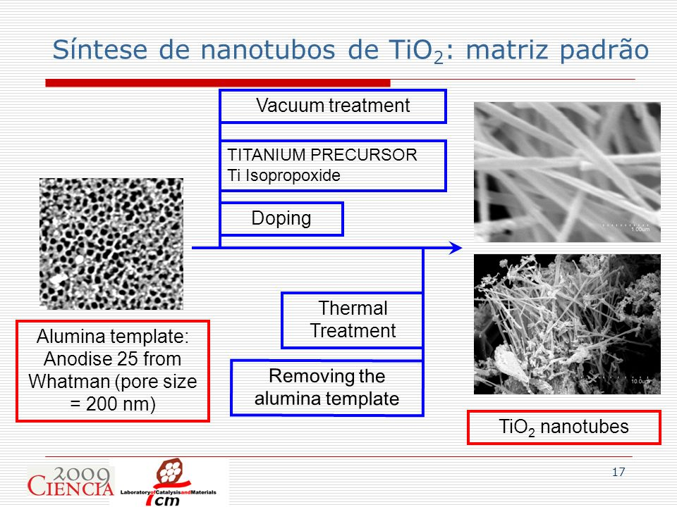Síntese de nanotubos de TiO2: matriz padrão