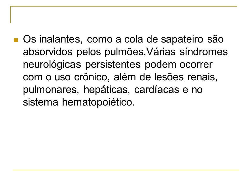 Os inalantes, como a cola de sapateiro são absorvidos pelos pulmões