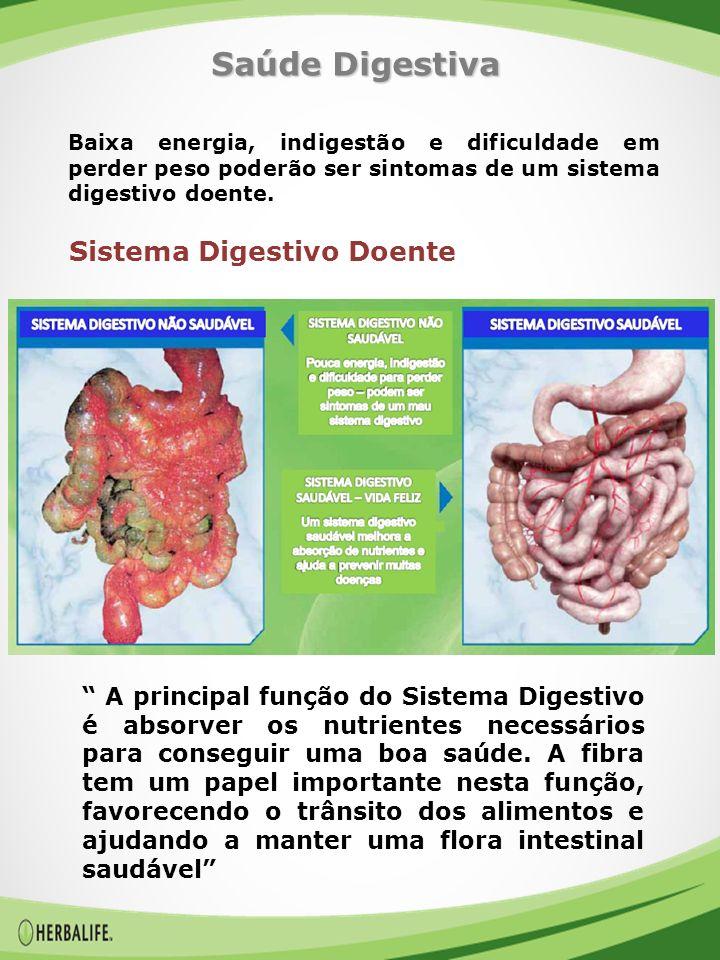Saúde Digestiva Sistema Digestivo Doente
