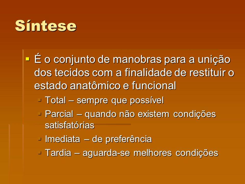 Síntese É o conjunto de manobras para a unição dos tecidos com a finalidade de restituir o estado anatômico e funcional.