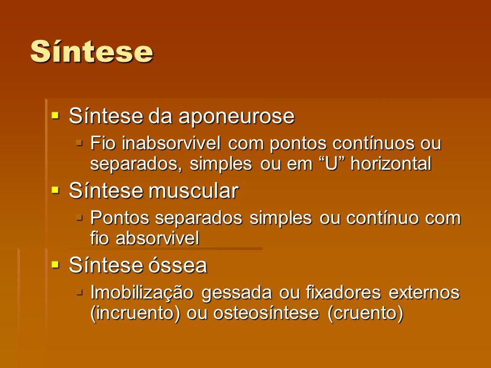 Síntese Síntese da aponeurose Síntese muscular Síntese óssea