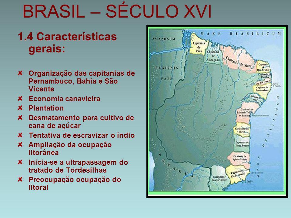 BRASIL – SÉCULO XVI 1.4 Características gerais: