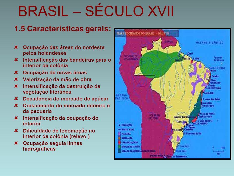 BRASIL – SÉCULO XVII 1.5 Características gerais: