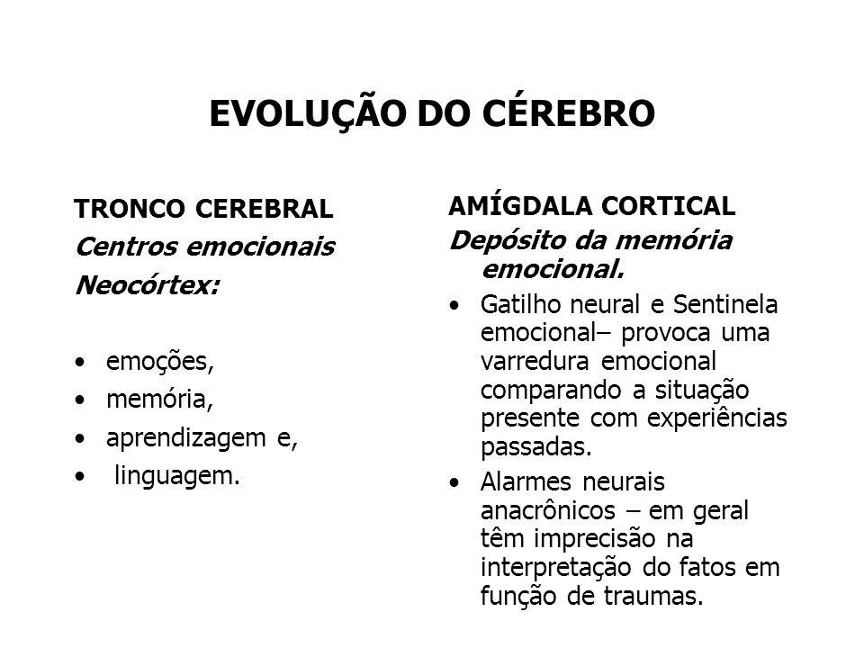 EVOLUÇÃO DO CÉREBRO TRONCO CEREBRAL Centros emocionais Neocórtex: