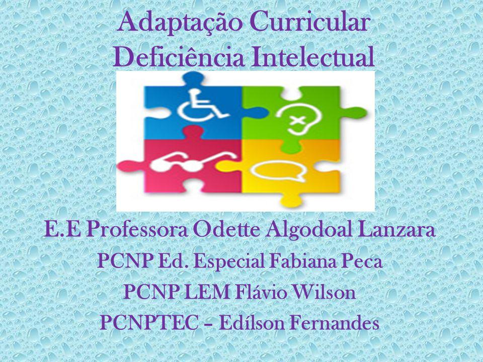 Adaptação Curricular Deficiência Intelectual