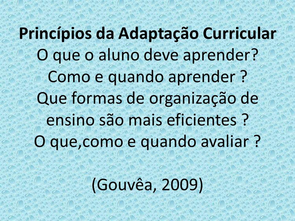 Princípios da Adaptação Curricular O que o aluno deve aprender