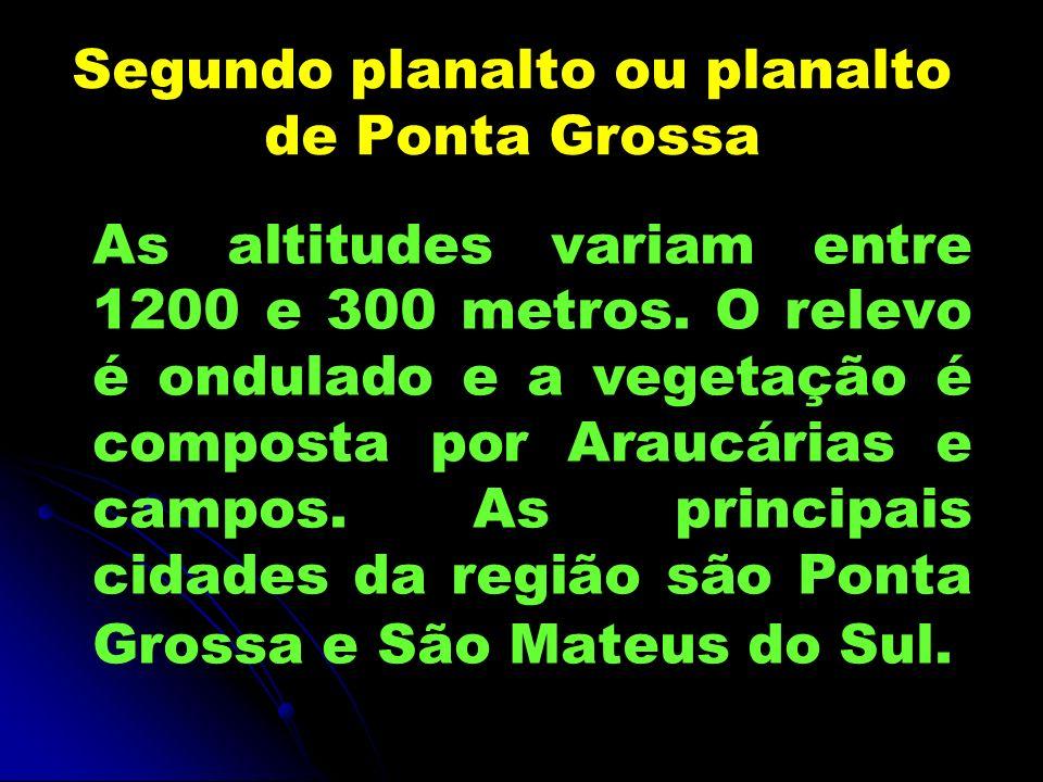Segundo planalto ou planalto de Ponta Grossa