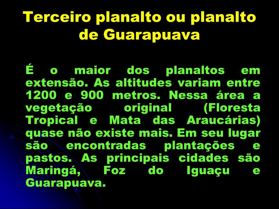 Terceiro planalto ou planalto de Guarapuava