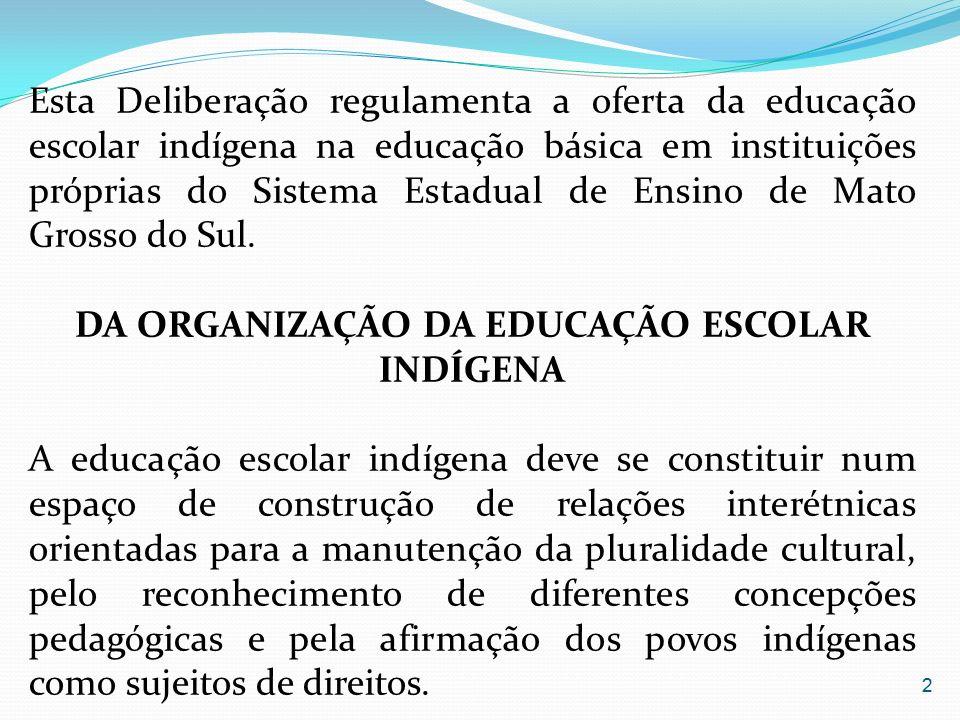 DA ORGANIZAÇÃO DA EDUCAÇÃO ESCOLAR INDÍGENA