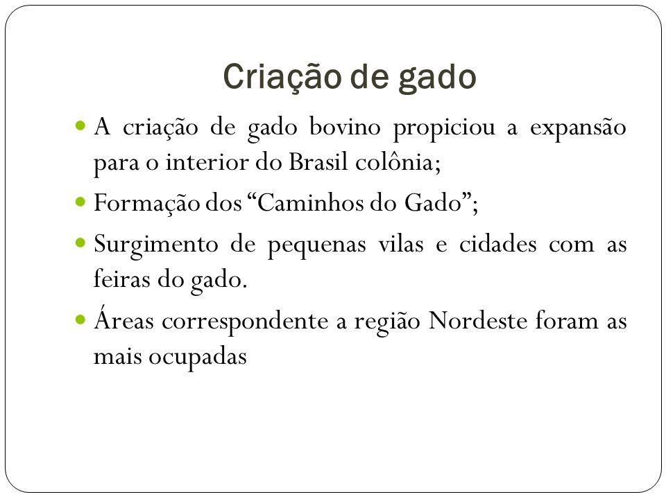 Criação de gado A criação de gado bovino propiciou a expansão para o interior do Brasil colônia; Formação dos Caminhos do Gado ;