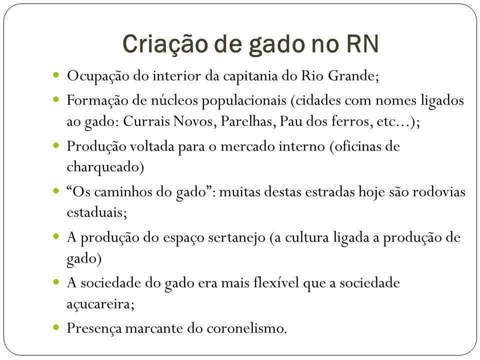 Criação de gado no RN Ocupação do interior da capitania do Rio Grande;