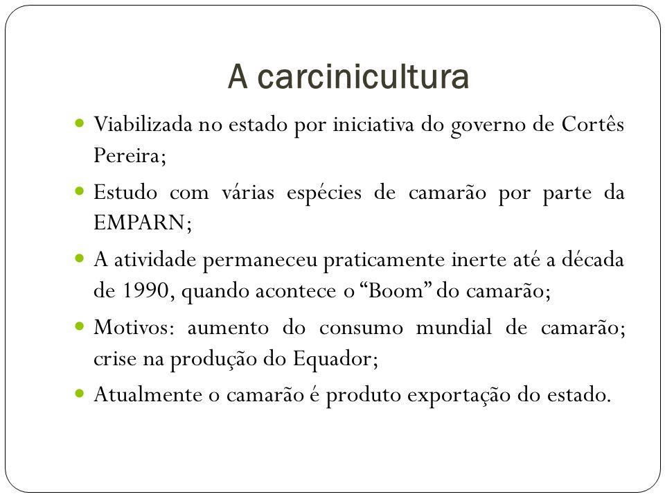 A carcinicultura Viabilizada no estado por iniciativa do governo de Cortês Pereira; Estudo com várias espécies de camarão por parte da EMPARN;