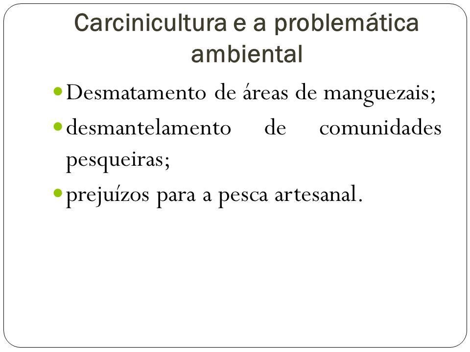 Carcinicultura e a problemática ambiental