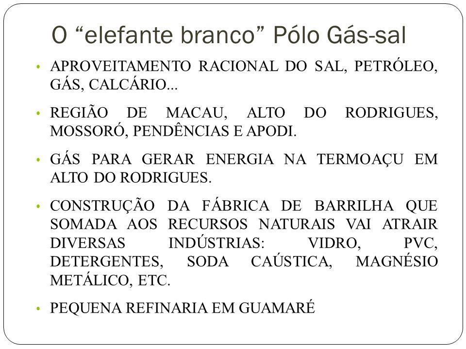 O elefante branco Pólo Gás-sal