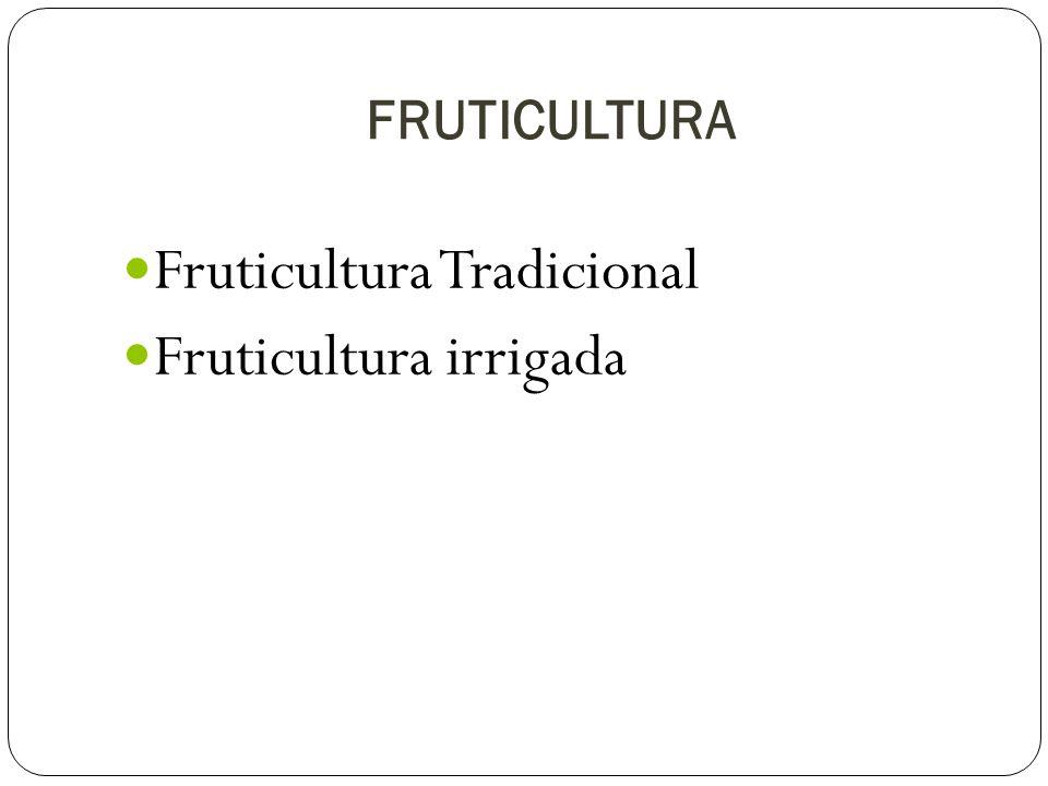 Fruticultura Tradicional Fruticultura irrigada