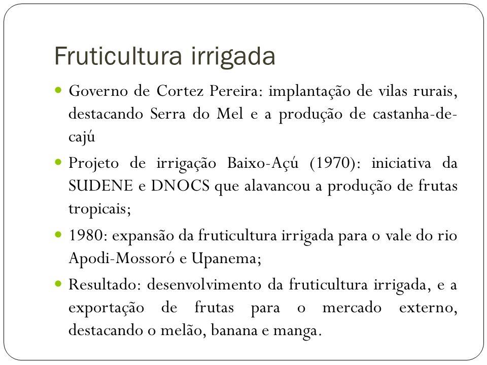 Fruticultura irrigada