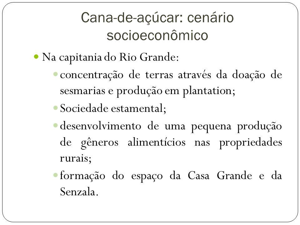 Cana-de-açúcar: cenário socioeconômico