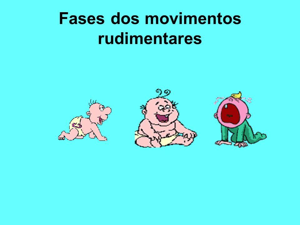 Fases dos movimentos rudimentares