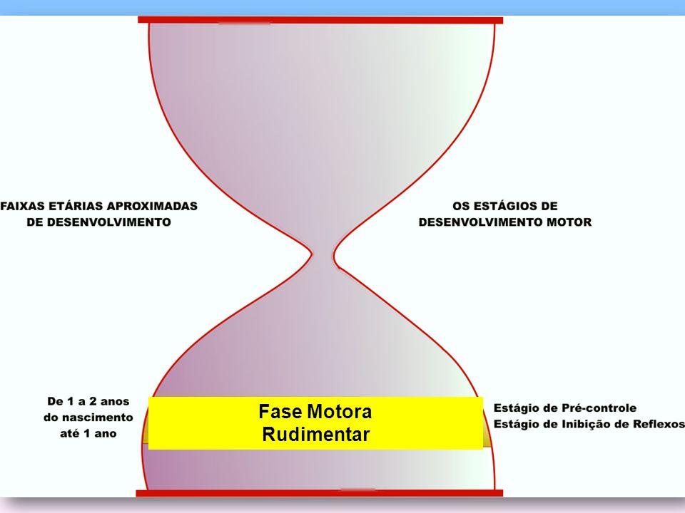 Fase Motora Rudimentar