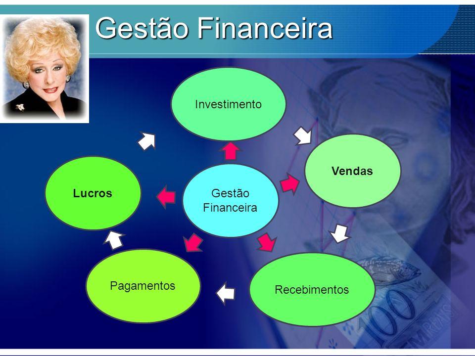 Gestão Financeira Investimento Vendas Lucros Gestão Financeira