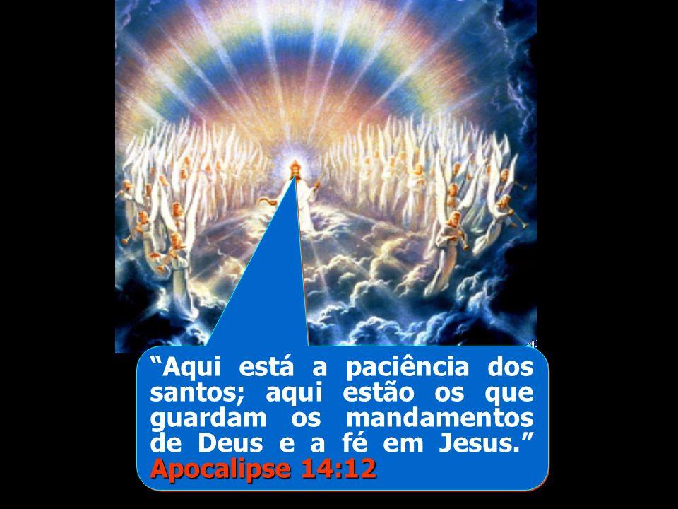 Aqui está a paciência dos santos; aqui estão os que guardam os mandamentos de Deus e a fé em Jesus. Apocalipse 14:12