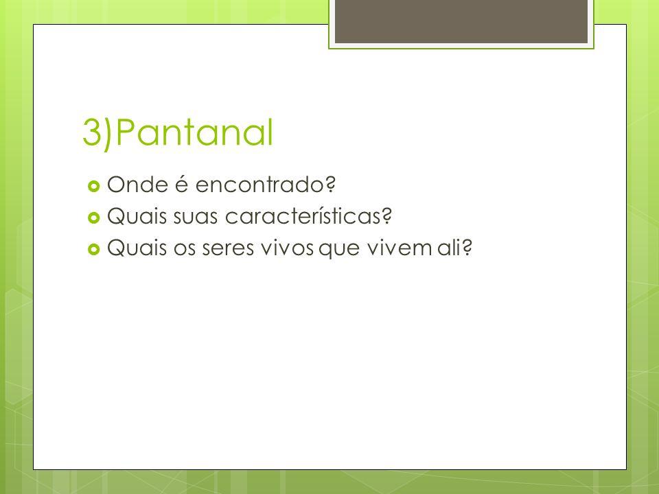 3)Pantanal Onde é encontrado Quais suas características