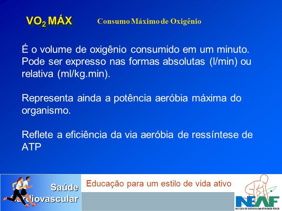 VO2 MÁX Consumo Máximo de Oxigênio.