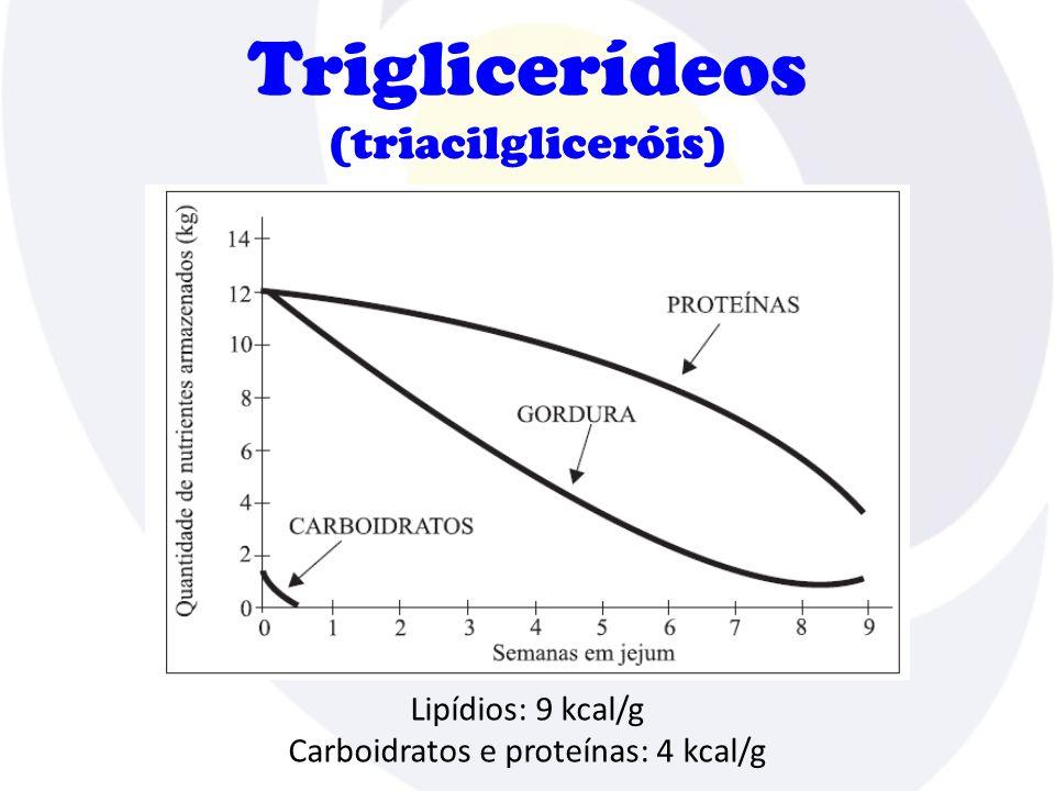 Triglicerídeos (triacilgliceróis)