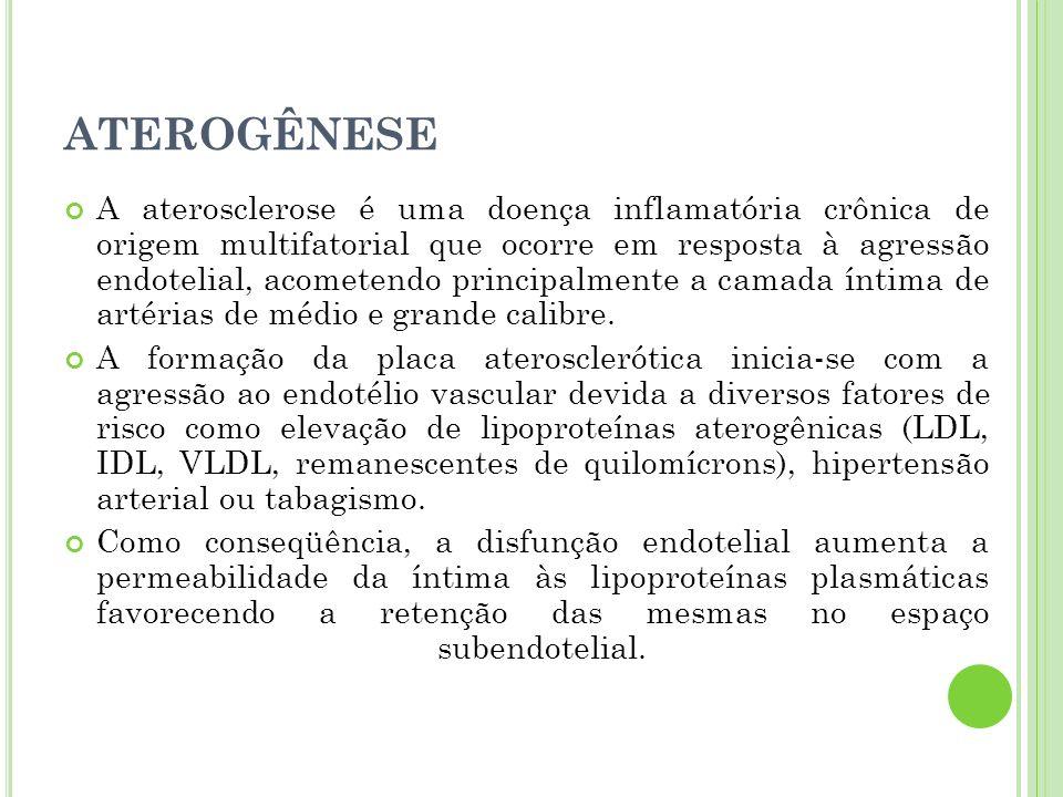 ATEROGÊNESE