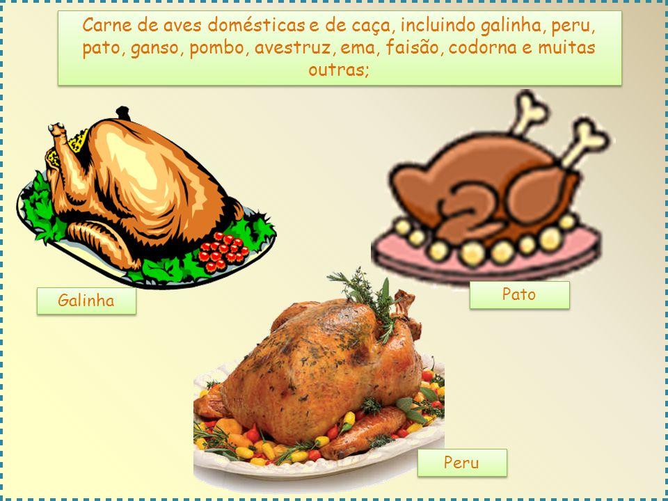 Carne de aves domésticas e de caça, incluindo galinha, peru, pato, ganso, pombo, avestruz, ema, faisão, codorna e muitas outras;