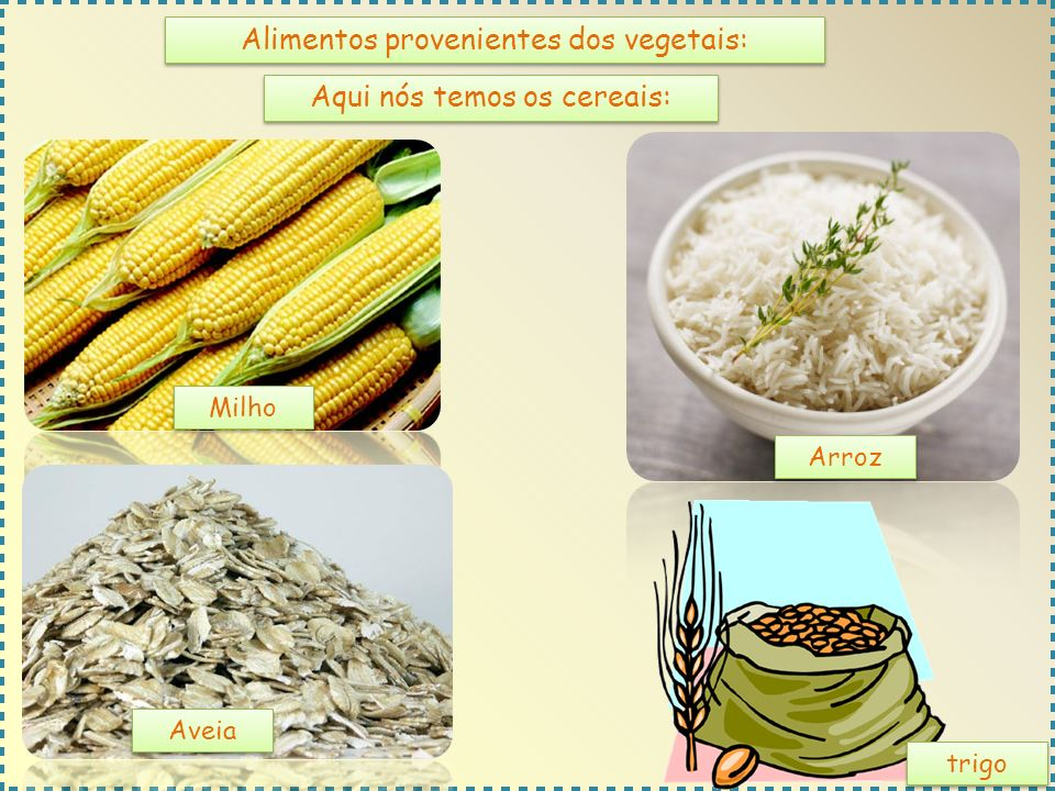 Alimentos provenientes dos vegetais:
