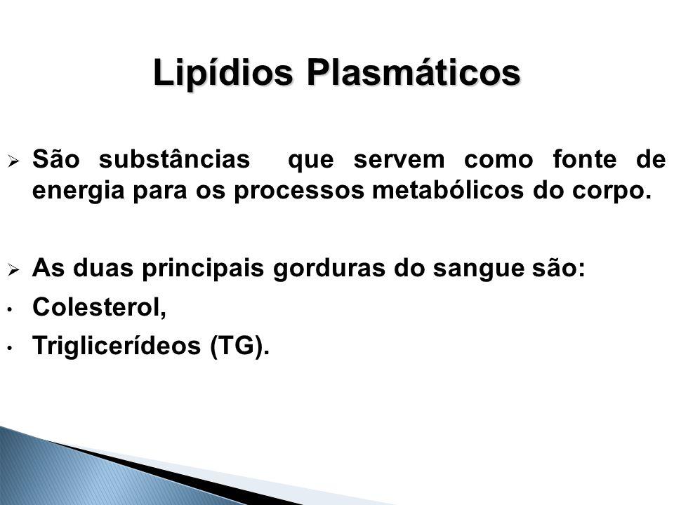 Lipídios Plasmáticos São substâncias que servem como fonte de energia para os processos metabólicos do corpo.
