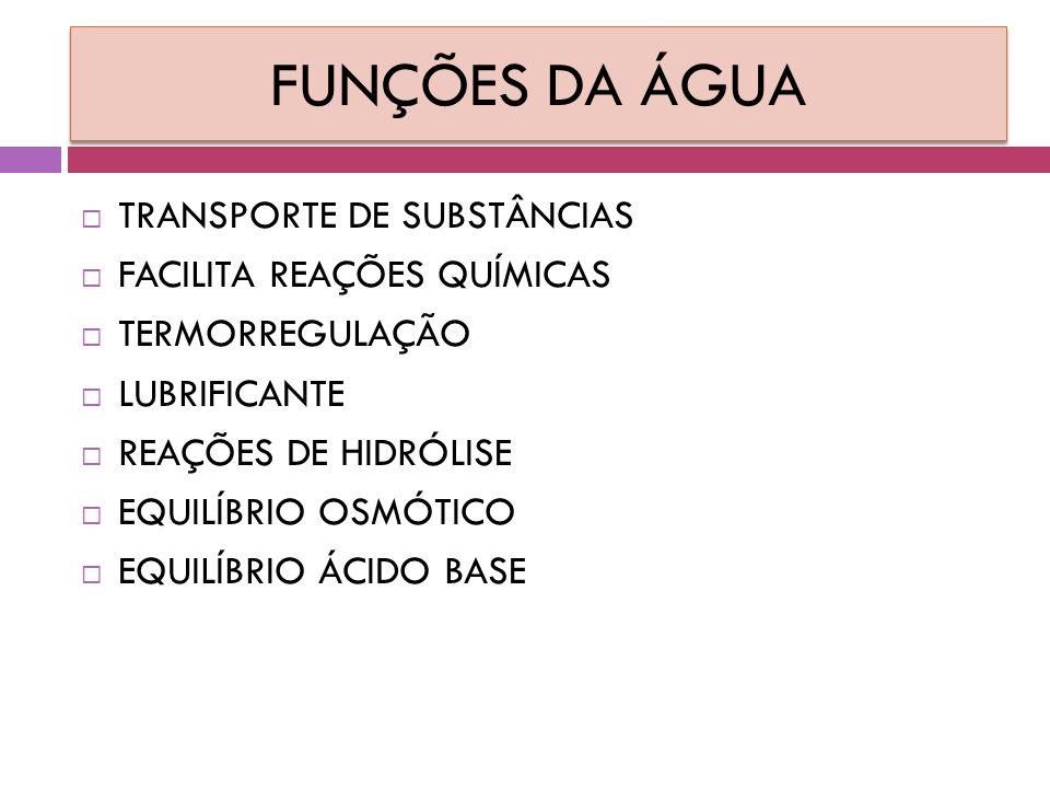 FUNÇÕES DA ÁGUA TRANSPORTE DE SUBSTÂNCIAS FACILITA REAÇÕES QUÍMICAS