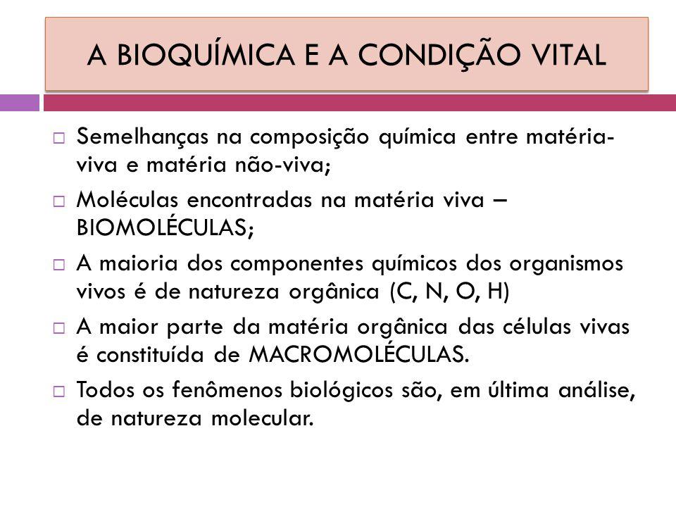 A BIOQUÍMICA E A CONDIÇÃO VITAL