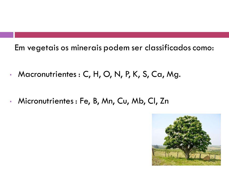Em vegetais os minerais podem ser classificados como: